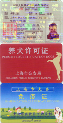 chineselicenses.jpg